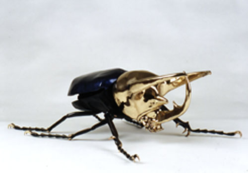 Giant Atlas Beetle The Atlas Beetle lives in the